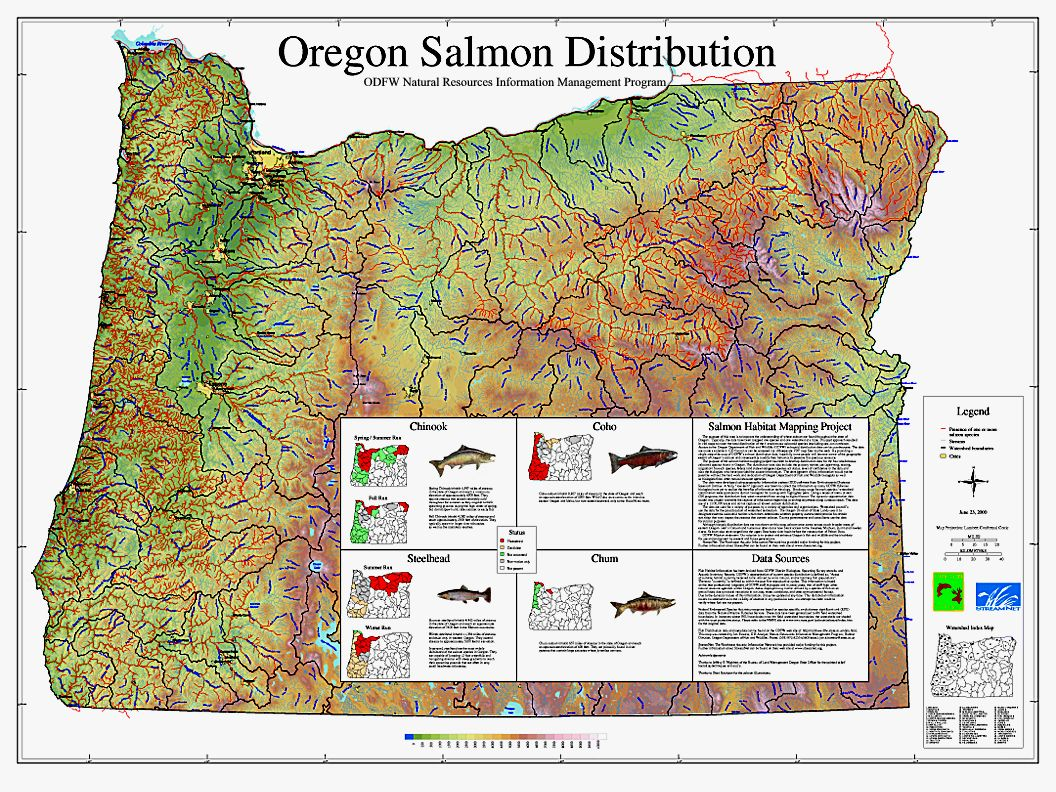 Oregon Salmon Distribution Map Natural Resources Information - Natural resources map of us